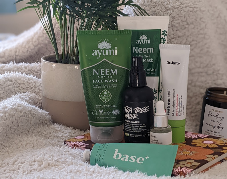 6 Best Tea Tree Skincare Products | How Can Tea Tree Help Your Skin?